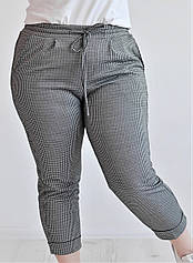 Женские  брюки трикотажные укороченные, расцветка - гусиная лапка 48,50,52 Van Gils 2031