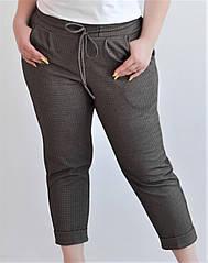Женские брюки джоггеры большого размера,в клеточку, кофейные 48,50,52 Van Gils 2032