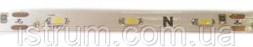 Изолированная LED лента YM 5050-60L (теплый белый) 10-12LM/led IP 65 с самоклейкой, 12V DC