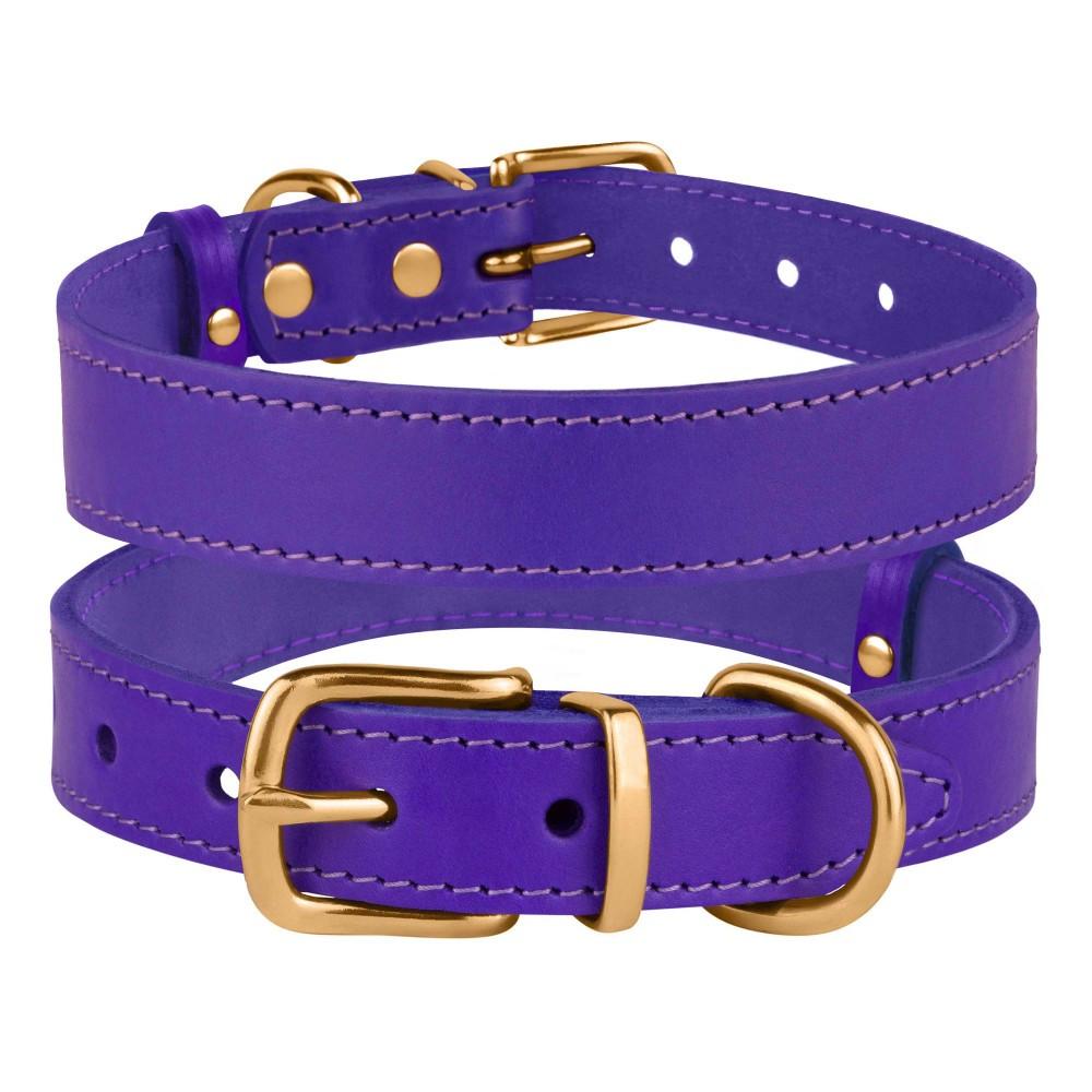 Ошейник для Собак Кожаный BronzeDog Classic с Литой Латунной Фурнитурой Фиолетовый M