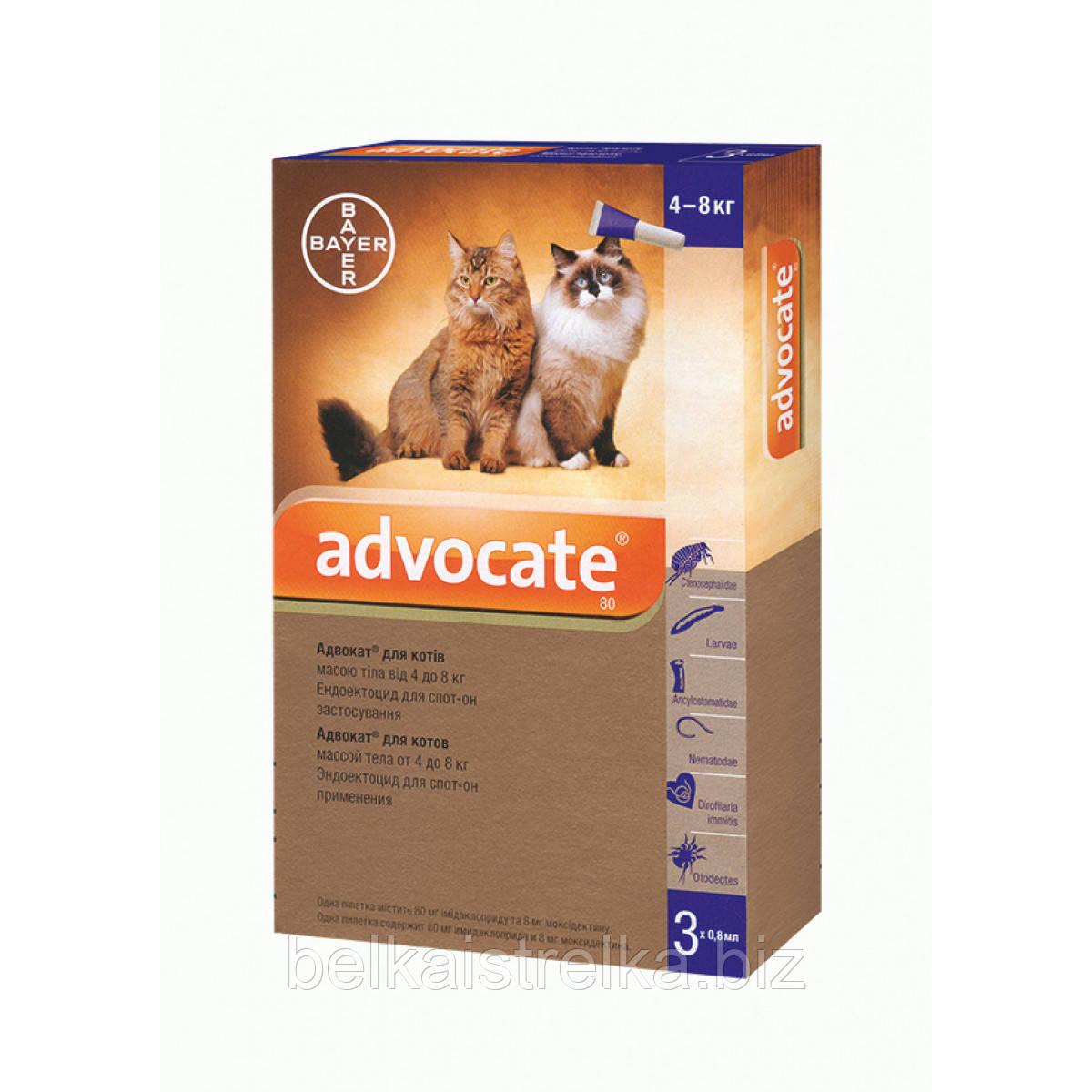 Краплі Advocate Bayer Адвокат інсектицидні для котів вагою 4-8 кг, 1 піпетка х0,8мл
