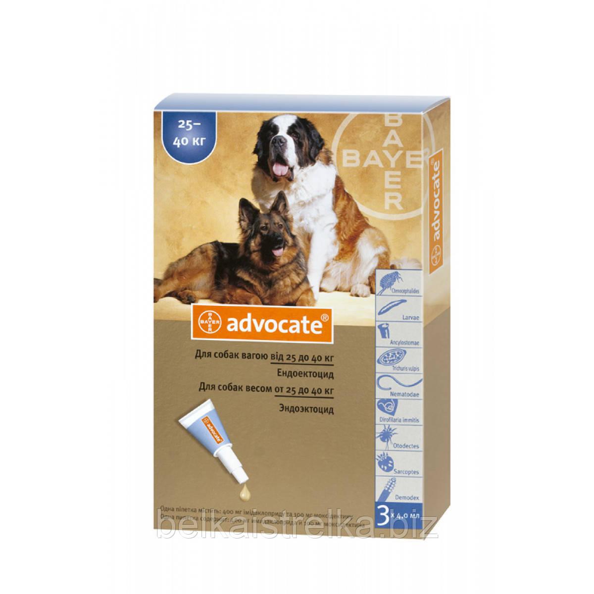 Капли Advocate Адвокат от глистов, блох, клещей для собак весом от 25 кг, 1 пипетка х4мл