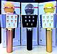 Беспроводной Караоке Микрофон Wster WS-1688 Колонка Блютуз Blueto, фото 4