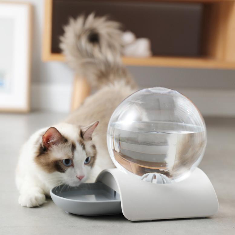 Автоматическая поилка для собак кошек