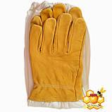 Перчатки пчеловода  кожаные XXXL, фото 2