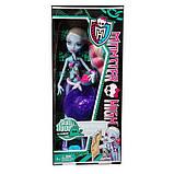 Лялька Monster High Skull Shores Abbey Bominable Doll, Еббі Боминейбл Узбережжі Черепа, фото 5