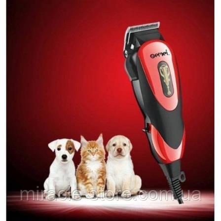 Професійна машинка для стрижки собак і котів, фото 2