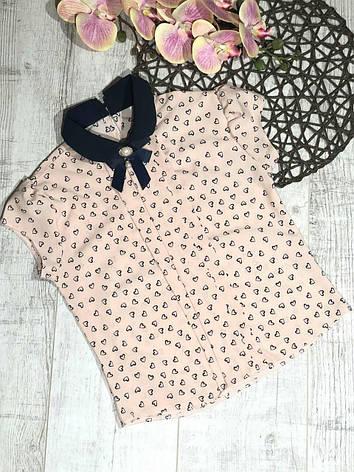 Стильная блузка для девочки с коротким рукавом в школу р. 128-146 опт, фото 2