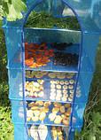 Сітка для сушіння риби, грибів, фруктів 3 яруси, фото 5