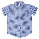 Детская рубашка для мальчика RB-1 (размеры 86,92, цвет белый,голубой,персиковый)), фото 2