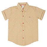 Детская рубашка для мальчика RB-1 (размеры 86,92, цвет белый,голубой,персиковый)), фото 3