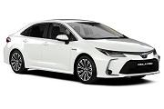 Toyota Corolla Sd (2019-)