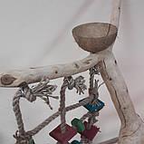 Майданчик для папуги - присада, фото 2