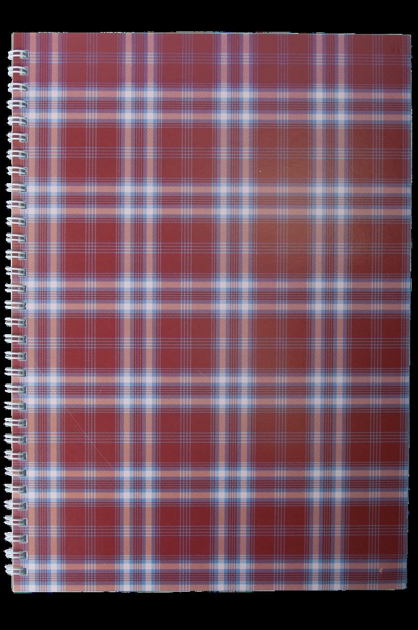 Блокнот SHOTLANDKA А4 , спіраль, 48арк клітинка, картонна обкладинка, бордова BM.2590-13