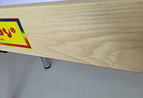 Стіл для малювання піском 100х60см Art&Play® ясен з відсіком для іграшок, фото 3