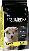 Equilibrio Puppies Medium Breeds, 2 кг