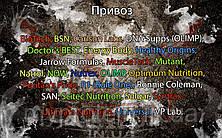 Поступление: BioTech, BSN, Carlson Labs, DNA Supps (OLIMP), Doctor's BEST, Energy Body, Healthy Origins, Jarrow Formulas, MuscleTech, Mutant, Natrol, NOW, Nutrex, OLIMP, Optimum Nutrition, Puritan's Pride, R1 (Rule One), Ronnie Coleman, SAN, Scitec Nutrition, Solgar, Syntrax, Ultimate Nutrition, Universal, VP Lab.