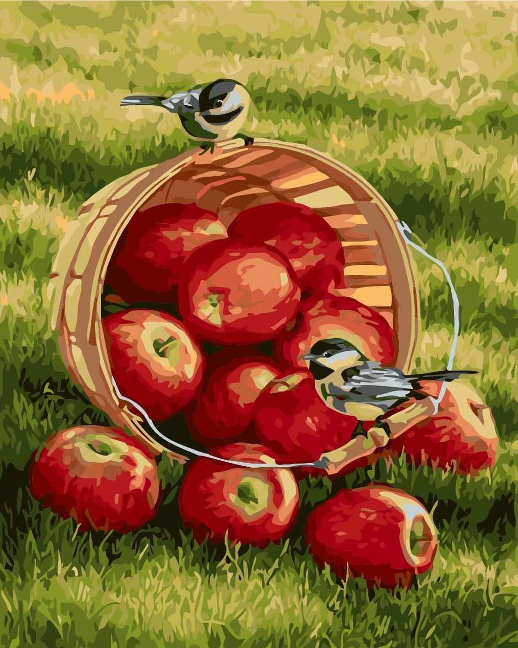 КНО2469 Раскраска по номерам Хрустящие яблочки, Без коробки
