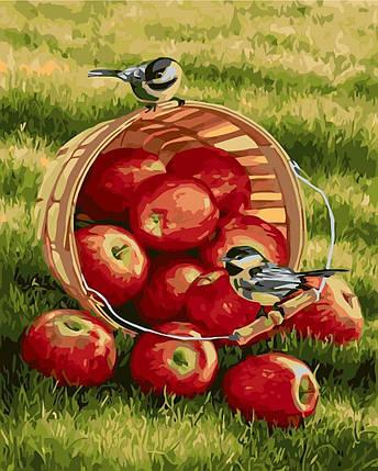 КНО2469 Раскраска по номерам Хрустящие яблочки, Без коробки, фото 2
