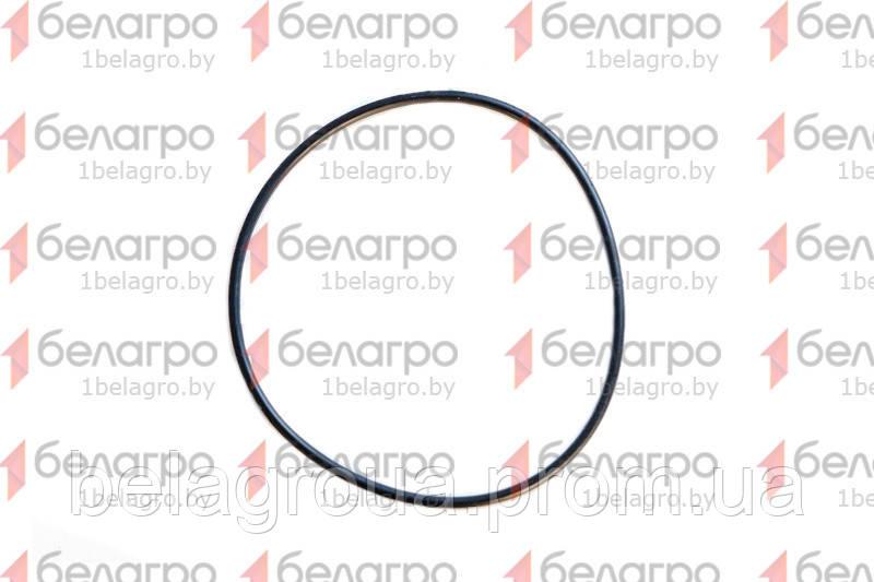 095-100-30-2-2 Кольцо уплотнительное, Беларусь