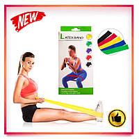 Набор фитнес резинок Latex Band (в комплекте 5 штук)