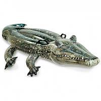 Надувной плотик для плавания «Алигатор» Intex 57551 Intex (57551)