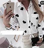 Рубашка женская хлопковая цветная с длинным рукавом, разные цвета, Р-р. S,M,LКод 645Т, фото 3
