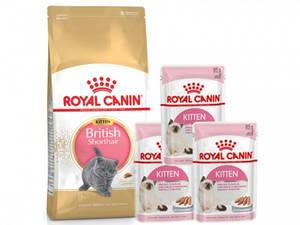 Royal Canin BRITISH SHORTHAIR 2кг3пауча KITTEN INSTINCTIVE 2кг3пауча