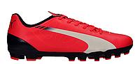 Сороконожки для футбола PUMA EVOSPEED 5.3 AG  103023-03