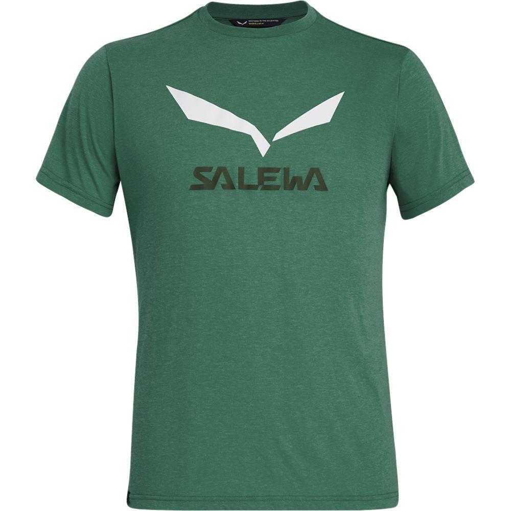 Футболка чоловіча Salewa SOLIDLOGO DRI-REL L Green