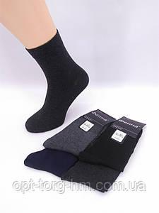 Мужские носки Фенна (41-47обувь)
