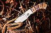 Нож складной 5149 CWE, фото 3
