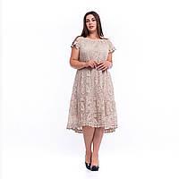 Бежева мереживна літня жіноча сукня New Grinta 7801 батал