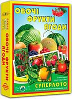 """Супер ЛОТО """"Овощи, фрукты, ягоды"""" 81992 , детское"""