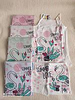 """Комплект нижнего белья майка с трусиками на девочку """"Summer love"""" от 2 до 8 лет, цвета как на фото"""