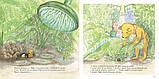 Книга Мишка Бруно в саду, фото 3