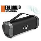 Портативная Bluetooth колонка Cigii F51, фото 9