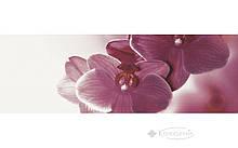 Декор Paradyz Abrila inserto Kwiat B 20x60 белый
