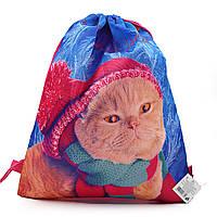 2010 Мешок сумка для сменной обуви Котенок в шапке 39*34 см для девочки