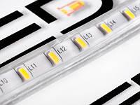 Світлодіодна стрічка 3014-120led-10mm-220V, IP68 одинарна плата білий