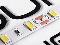 Світлодіодна стрічка 5630-60led-10mm-12V, IP20 18-20lm білий