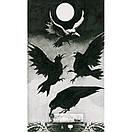 Murder of Crows Tarot/ Таро Ворон Смерти, фото 4
