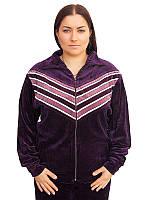 Женский велюровый спортивный костюм больших размеров (рр 50-62)