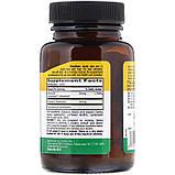 Витамин B6 (P-5-P, пиридоксаль-5-фосфат), P-5-P Country Life, 50 мг, 100 таблеток, фото 2