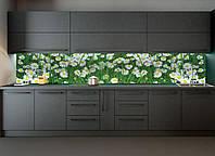 Кухонный фартук Летние ромашки в траве, Самоклеящаяся стеновая панель для кухни, Цветы, зеленый, 600*3000 мм