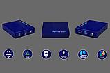 """Сменная пластина для 3D светильников """"Ра"""" 3DTOYSLAMP, фото 6"""