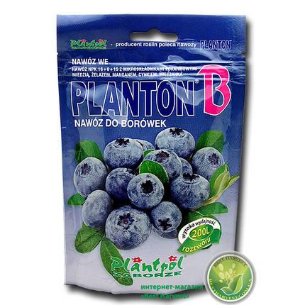 """Удобрение """"Planton B"""" (Плантон) 200 г (для черники), оригинал, фото 2"""