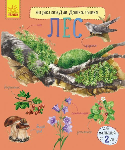 Енциклопедія дошкільника (нова): Ліс