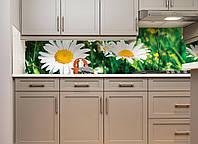 Кухонный фартук Солнечные ромашки виниловый (ПВХ наклейка пленка скинали для кухни) зеленый 600*2500 мм