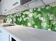 Кухонный фартук виниловый Летние ромашки в траве (ПВХ наклейка пленка скинали для кухни) зеленый 600*2500 мм